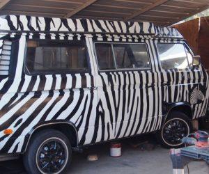 1980 Safari Zebra Vanagon Westy