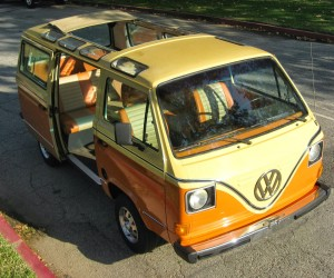 Custom 18 Window Vanagon