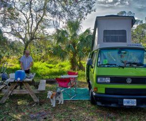 Hot Kiwi Green Vanagon