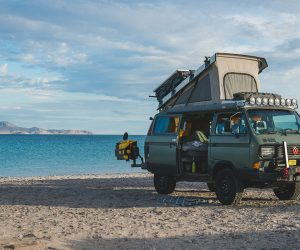 Buying a Vanagon