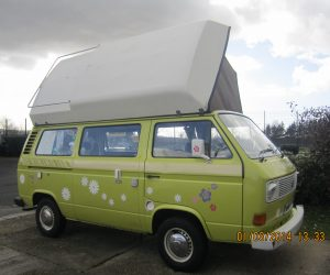 Viking Conversion Peace Van